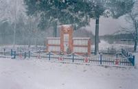 Памятник воинов Советской Армии 837 стрелкового полка 238 стрелковой дивизии 50-ой армии Брянского фронта погибших в боях за освобождение деревень Ким, Матреновка, Касилово в сентябре 1943г.