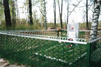 Памятник, установленный на братской могиле в деревне Александровка