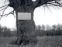 Памятное место захоронения партизана тульского отряда НКВД Ионова А., погибшего в 1942 г.